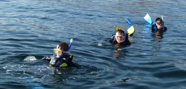 Christopher John Payne snorkelling